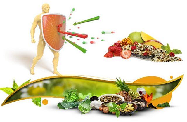 Cách tăng cường hệ miễn dịch cơ thể