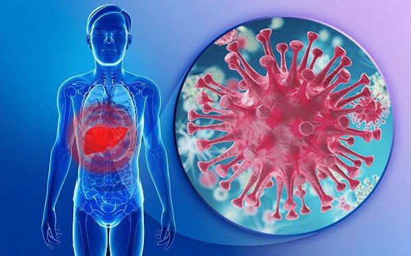 Ung thư biểu mô tế bào gan
