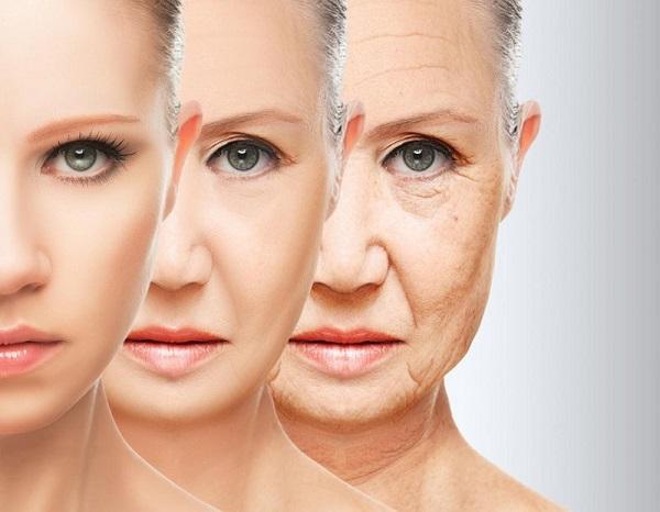 chống lão hóa da từ bên trong